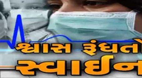 ગુજરાત સ્વાઇન ફ્લુના ભરડામાં, હાઈકોર્ટમાં સરકારે કર્યા મોટા ખુલાસાઓ