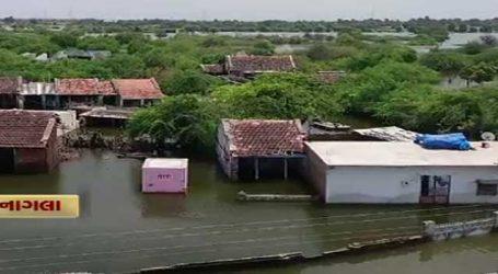 બનાસકાંઠા: નાગલામાં વરસાદી પાણીથી ગામની આર્થિક વ્યવસ્થાને ફટકાર