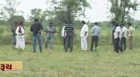 અંકલેશ્વર : ઝેરી પદાર્થ ખાવાથી 15 ગાય-3 ભેંસ અને 1 મોરનું મોત, પશુપાલકોમાં ફફડાટ