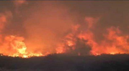 કેલિફોર્નિયાના જંગલમાં ભીષણ આગ, 10ના મોત