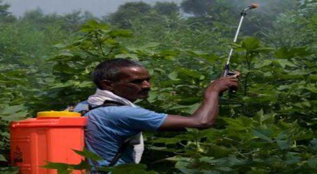 ગુજરાતમાં ખેડૂતોની આવક દેશમાં 12માં ક્રમે, પરેશ ધાનાણીના ભાજપ સરકાર પર આક્ષેપ