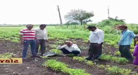 દિવાળી પહેલાં ખેડૂતો માટે અાવ્યા ખરાબ સમાચાર, રવી સિઝનમાં પડશે મોટો ફટકો