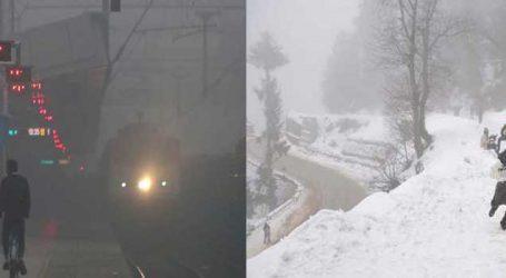 ઉત્તર ભારતમાં કાતિલ ઠંડીનું મોજુ, દિલ્હીમાં ગાઢ ધુમ્મસને કારણે 19 ટ્રેનો મોડી, આઠ ટ્રેનો રદ