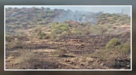અમરેલીના રાજુલાના વીડી પાસે ભીષણ આગ, કોઇ જાનહાની નહી