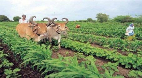 ગુજરાતના ખેડૂતો માટે સૌથી મોટા રાહતના સમાચાર : સરકાર બદલી શકે છે નિર્ણય