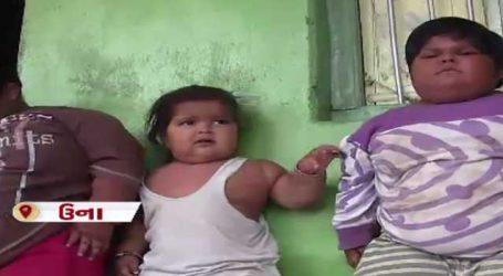 ગુજરાતના આ સુમો બાળકોના વજન છે 82, 60 અને 25 કિલો: સરકારે પણ કર્યા હાથ અદ્ધર