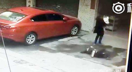 Viral Video : રસ્તા પરથી પસાર થઇ રહેલી મહિલા ઉપર પડ્યું કૂતરુ, જુઓ પછી શુ થયું