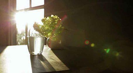 વાસ્તુ ટિપ્સ : ઘરમાં આવતો સૂર્ય પ્રકાશ ખોલશે ભાગ્યના દ્વાર