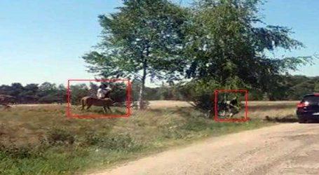 Viral Video : વાઇલ્ડ લાઇફ સફારી પડી ભારે, અચાનકથી ચિત્તાઓએ પરિવાર પર કર્યો હુમલો