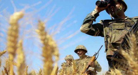 પાકિસ્તાનની નાપાક હરકત બરકરાર, ફરી શશ્ત્રવિરામ ભંગ કર્યો