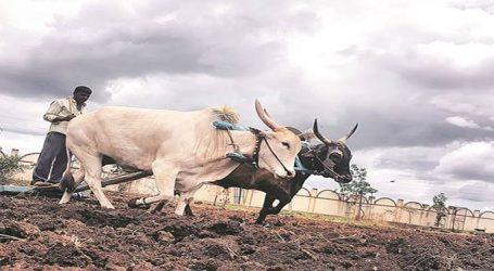 વહેલો વરસાદ છતાં ખરીફ વાવણી મોડી, દેશભરમાં ખેડૂત અાંદોલનની અસર