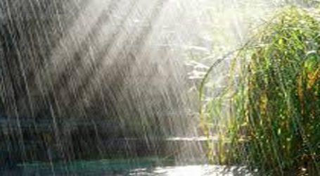 વરસાદ : જાણો ગુજરાતના અાગાહીકારોઅે શું જાહેર કર્યા છે વર્તારા
