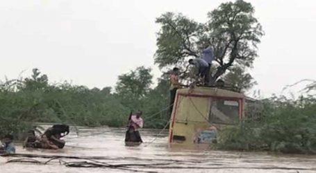 ભરૂચ : ધોધમાર વરસાદ વચ્ચે બસ ખોટકાઇ, જીવ બચાવવા 21 મુસાફરો બસના છાપરે ચડ્યાં