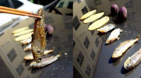 Photos: અહીં ગરમી એટલી છે કે કારના બોનેટ પર જ બની જાય છે ભોજન