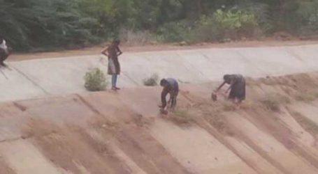 વડોદરા : નર્મદા નિગમની બેદરકારી કેનાલ સફાઇ માટે બાળકોને કામે લગાવ્યા