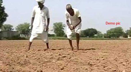 છોટા ઉદ્દેપુરમાં વાવણી બાદ હવે વરસાદ ખેંચાતા ખેડૂતો ચિંતિત