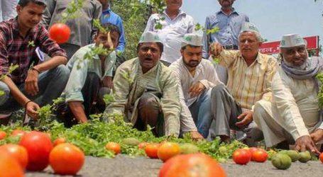 ખેડૂતો માટે ખુખશબર: મોદી સરકારે લીધો મોટો નિર્ણય, વધશે પાકના ભાવ