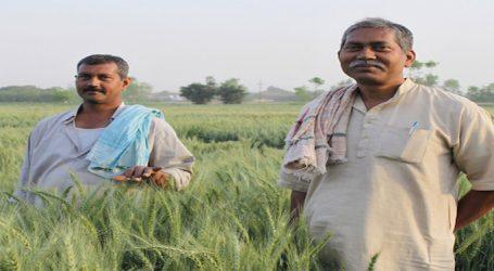 મોદી સરકારનો ખેડૂતો માટે માસ્ટર સ્ટ્રોક : મેઘા સાથે કેન્દ્ર સરકાર પણ મહેરબાન