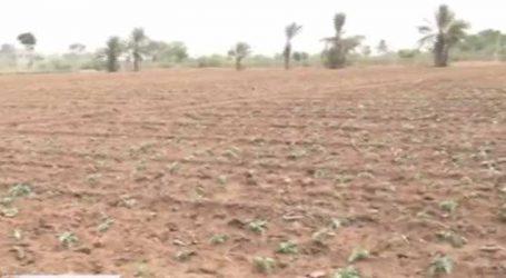 સરકારે હાથ ધરેલી રી-સર્વેની કામગીરીમાં ખેડૂતો ફસાયા, કામગીરી અસંતોષજનક