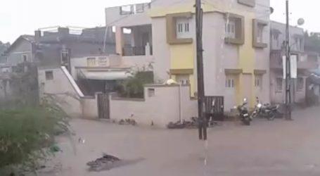 ગુજરાતના અા જિલ્લાના ખેડૂતો નસીબવંતા, ઘોઘામાં ધોધમાર વરસાદ