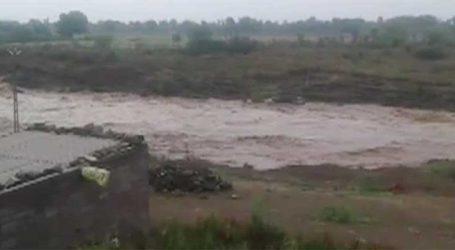 ભાવનગર-સોમનાથ નેશનલ-હાઈવેનો રસ્તો ઊંચો હોવાના કારણે ખેતરોમાં પાણી ભરાયા