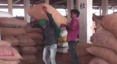 કચ્છમાં નવુ કૌભાંડ.. વેપારીઓ દ્વારા ખેડૂતોને ભોળવીને પાક ખરીદી છેતરપિંડી કરવામાં આવી