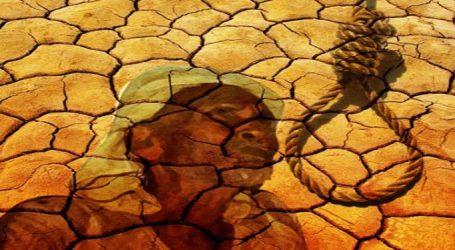 ગુજરાતની વાયબ્રન્ટ સરકાર જાગે, નવેમ્બરમાં સૌરાષ્ટ્રમાં 6 ખેડૂતોએ કરી આત્મહત્યા