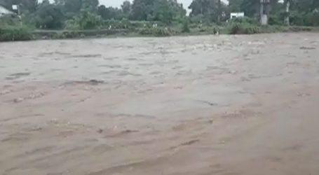 તાપી નદીમાં શ્રીજીની પ્રતિમાના વિસર્જન પર તંત્ર દ્વારા મુકાયેલ પ્રતિબંધના ધજાગરા ઉડ્યા