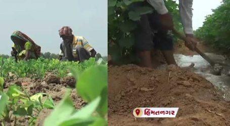 સરકારની આ જાહેરાતથી ઉત્તર ગુજરાતમાં ખેડૂતોને ખેતીમાં મળશે રાહત