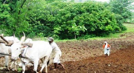 સરકાર ટૂંક સમયમાં ખેડૂતોની આવક વધારવા પેકેજ કરશે જાહેર