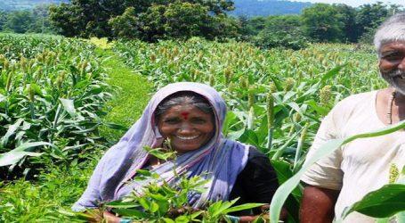 દેશના 12 કરોડ ખેડૂતો માટે કેન્દ્ર સરકારનો સૌથી મોટો નિર્ણય, ખેડૂતોને મળશે ગેરંટી
