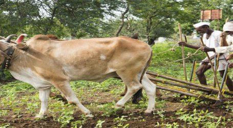 ખેડૂતોની એક લાખ રૂપિયા સુધીની લોન માફ કરશે આ રાજ્ય સરકાર