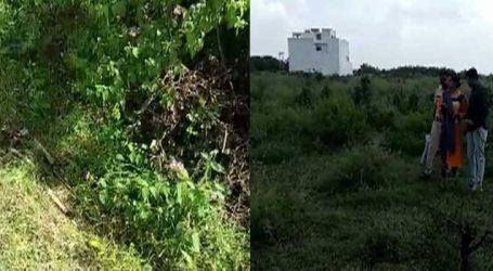 રાજકોટના કાલાવાડ રોડ પર મહિલાની આવી લાશ જોઈને પોલીસ પણ ભાન ભૂલી હશે