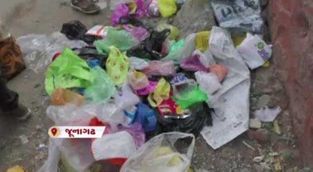 જૂનાગઢની પરિક્રમામાં પ્લાસ્ટિકનું પ્રદૂષણ, છેલ્લા 5 વર્ષથી ચાલે છે અભિયાન