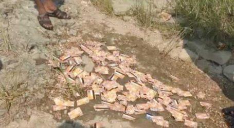પંચમહાલઃ નદીના તટ પર રમી રહેલા બાળકોને મોટી સંખ્યામાં મળ્યા ATM કાર્ડ
