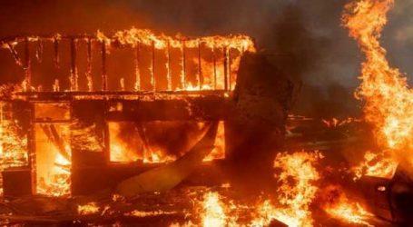 કેલિફોર્નિયામાં લાગેલી આગમાં 41ના મોત, 228 જેટલા લોકો ગૂમ