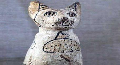 6000 વર્ષ જુના સ્મશાનમાંથી મળી આવ્યાં બિલાડીઓનાં મડદા