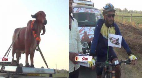 દ્નારકાનો આ આહીર યુવાન ગૌમાતાની રક્ષા કાજે નીકળ્યો દિલ્હીની યાત્રા પર
