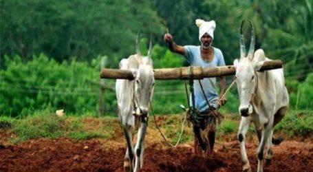 ખેડૂતોને લીલાલહેર, 1,000 કરોડ રૂપિયાનો થશે ફાયદો : હાઇકોર્ટે આપ્યો ચૂકાદો