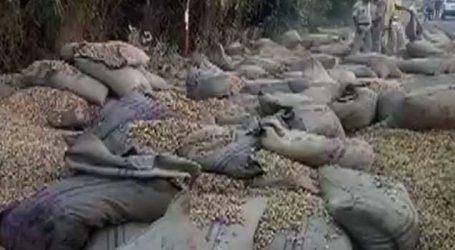 મહેસાણા : મગફળી ભરેલી ટ્રક સળગવા લાગી અને 600 બોરીઓ..