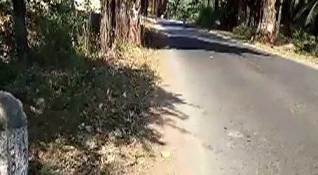 જૂનાગઢ-માંગરોળમાં મગરમચ્છની પીઠ જેવા રોડથી વાહન ચાલકો પરેશાન