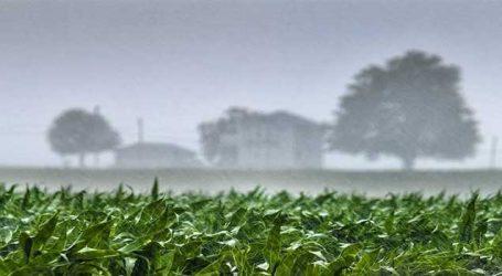 જે ઠંડીથી ખેડૂતોને ફાયદો થતો હતો તે જ ઠંડી બની ખેડૂતો માટે મુસીબત રૂપ