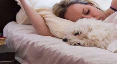 રિસર્ચમાં ખુલાસો, જીવનસાથીને બદલે મહિલાઓ કૂતરાની સાથે આરામથી ઉંઘે છે