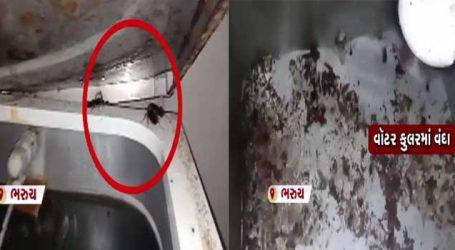 VIDEO : ભરૂચની જે હોસ્પિટલના કુલરમાંથી દર્દીઓ રોજ પાણી પીતા હતા તેમાંથી જ વંદા નીકળ્યા