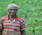 ખેડૂતો માટે ખુશખબર, મોદી સરકાર આપી શકે છે દર મહિને 500થી વધારે રૂપિયા