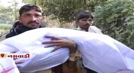 છોટાઉદેપુરમાં દીપડાને મોતને ઘાટ ઉતારનાર વ્યક્તિ ઝડપાયો,પણ જાણો સમગ્ર ઘટના