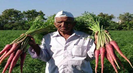 જૂનાગઢના આ ખેડૂતે પદ્મશ્રી મેળવ્યો પરંતુ તેમની કહાની વાંચીને તમે અચંબો પામી જશો