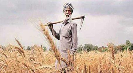 ગુજરાતના આ ખેડૂતોને નહીં મળે 6000 રૂપિયા! જાણો નિયમો અને શરતો
