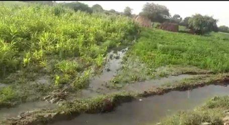 કેનાલમાં ગાબડું પડ્યું અને ખેતરમાં જીરુંનો ઉભો પાક ધોવાઈ ગયો, આ છે પાણી આપવાની રીત