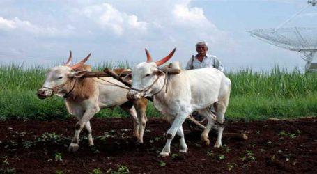 પ્રધાનમંત્રી કિસાન યોજનાથી ખેડૂતોને થશે વધુ ફાયદો
